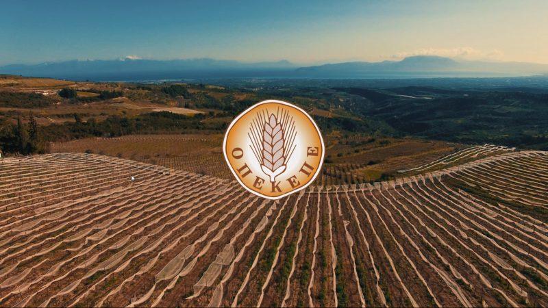 ΟΠΕΚΕΠΕ: Πληρωμή ενίσχυσης για τα αχλάδια