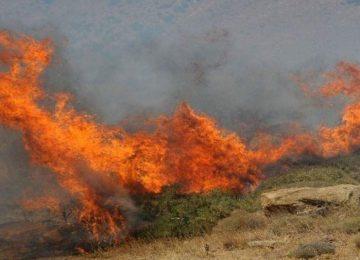 Φωτιά τώρα: Υψηλός ο κίνδυνος πυρκαγιάς την Τετάρτη