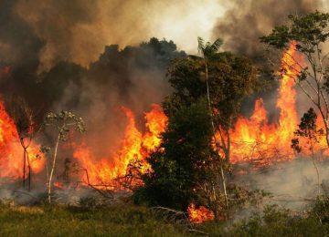 Αμαζόνιος: «Καίγεται το σπίτι μας»