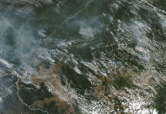 Αμαζόνιος φωτιά: Τι κρύβεται πίσω από την οικολογική καταστροφή