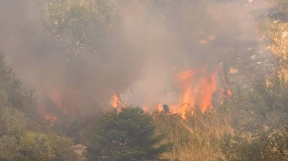 Φωτιά Θήβα: Καίει ανεξέλεγκτα και πλησιάζει τον Κορινθιακό