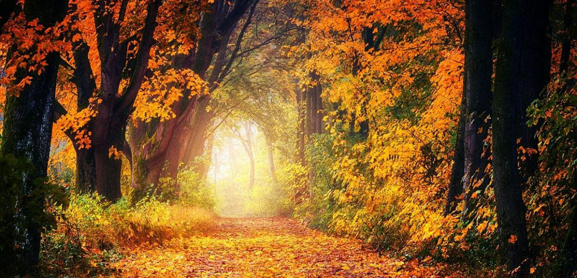 Φθινόπωρο: Κι επίσημα μπήκαμε στο φθινόπωρο