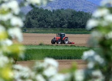 Τα νέα του αγρότη (4/11): ΟΠΕΚΕΠΕ πληρωμές, ΕΛΓΑ αποζημιώσεις