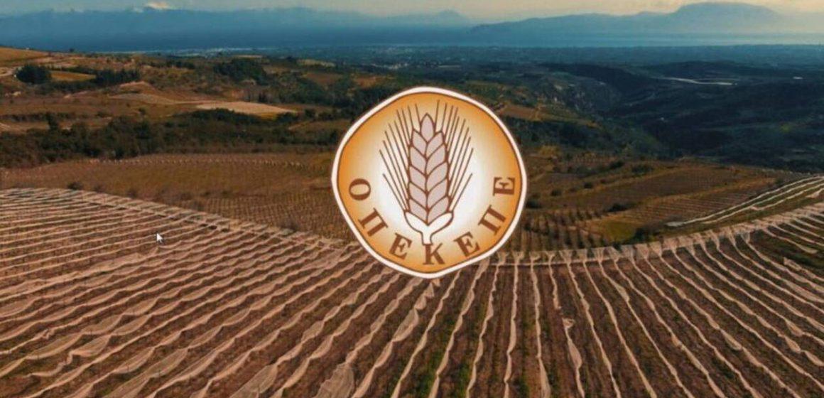 Τα νέα των αγροτών 3/12/2020: Έρχεται πρασίνισμα, βασική ενίσχυση, εξισωτική – ΟΠΕΚΕΠΕ πληρωμές