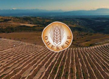 Αγροτικό δελτίο ειδήσεων 05/11/2020 : ΟΠΕΚΕΠΕ πληρωμές, Εξισωτική, ΕΛΓΑ αποζημιώσεις