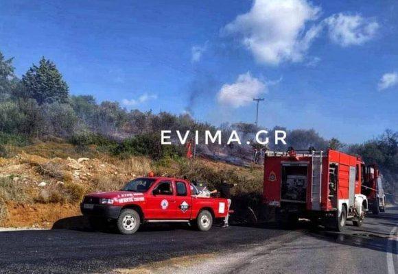 Φωτιά ΤΩΡΑ στην Εύβοια: Απειλεί κατοικημένη περιοχή μετά την εκκλησία της Αγ. Σοφίας