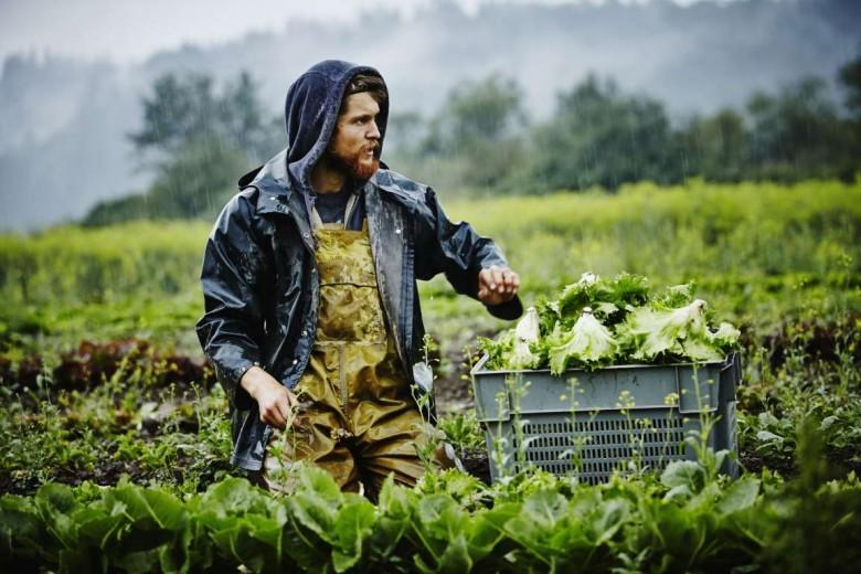 Δελτίο ειδήσεων 20/1/2021: Κάρτα αγρότη, ΟΠΕΚΕΠΕ πληρωμές