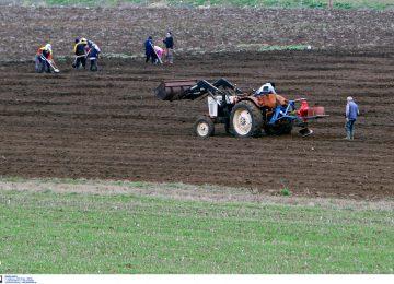 Τι πληρώθηκαν και τι έρχεται από ΟΠΕΚΕΠΕ για τους αγρότες – Τα ΝΕΑ για εξισωτική, πρασίνισμα, ενιαία ενίσχυση