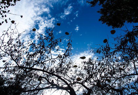 Καιρός σήμερα: Σφοδρό κύμα κακοκαιρίας με καταιγίδες και χαλαζοπτώσεις – Αποπνικτική ατμόσφαιρα στην Αθήνα, κάλυψε τα πάντα η αφρικανική σκόνη