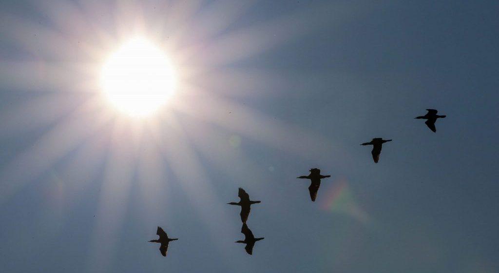 Καιρός σήμερα: Λιώνουν οι πάγοι – Ηλιοφάνεια σε όλη τη χώρα